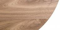 Wood legs and steel legs center table - Berkin